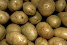 Отличный картофель