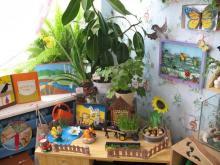 Цветы в детском саду